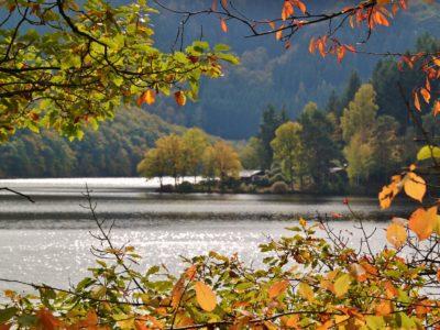 Der Biggesee im Herbst